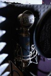 Blue MIC bluebird Конденсаторный студийный микрофон