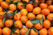 КЛИМЕНТИНЫ и другие фрукты из ЕГИПТА