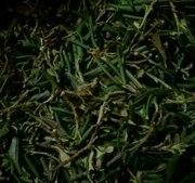 Травяные чаи Кавказа,  Ароматный Саган Дайля в СПб оптом. Свежий урожай