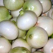 Лук и другие овощи из ЕГИПТА