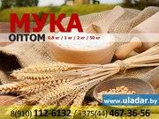 Мука пшеничная оптом купить
