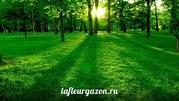 Рулонный газон,  Укладка и Устройство газона