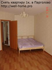 Однокомнатная квартира в Выборгском районе,  долгосрочная аренда.