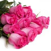Розовые розы 50-60 см.
