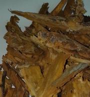 кора усохшей вишни - средство для оздоровления щитовидной железы