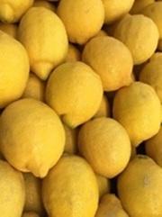 Лимоны из Испании оптом от производителя