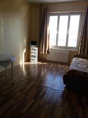 Продам 1-комнатную квартиру в Н.Девяткино