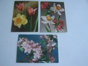 3 почтовые открытки