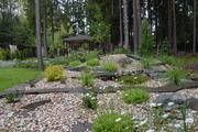 Эксклюзивные каменистые композиции: альпийские горки,  рокарии