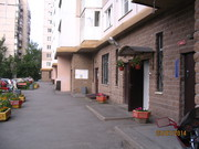 Аренда 1  к кв в Купчино  в новом доме