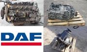 Запчасти б/у для грузовиков и тягачей Даф / DAF