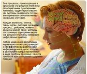 Лечебно-диагностическая IT-система востановительной медицины/Эксклюзив